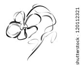 vector flower pattern on white... | Shutterstock .eps vector #120112321