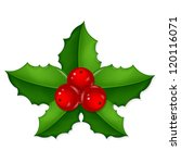 christmas holly berry  with... | Shutterstock .eps vector #120116071