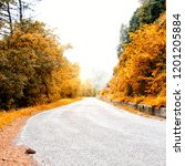 road in autumn forest | Shutterstock . vector #1201205884