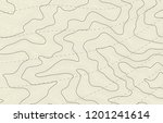 abstract topography contour map | Shutterstock .eps vector #1201241614