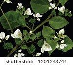 floral wallpaper illustration   ... | Shutterstock . vector #1201243741