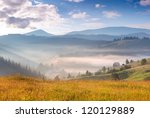 summer landscape with a... | Shutterstock . vector #120129889