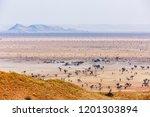 landscape at tsondab valley... | Shutterstock . vector #1201303894