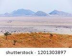 landscape at tsondab valley... | Shutterstock . vector #1201303897