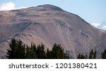 huckleberry mountain or marmot... | Shutterstock . vector #1201380421