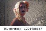 young beautiful girl elf.... | Shutterstock . vector #1201408867
