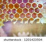 bee honeycombs.the structure of ... | Shutterstock . vector #1201423504