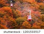 nikko japan   october 21  2016. ... | Shutterstock . vector #1201533517