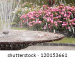 Stock photo fountain in rose garden 120153661