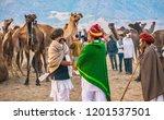 pushkar  india   november 20 ... | Shutterstock . vector #1201537501