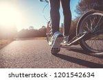 pretty young brunette woman... | Shutterstock . vector #1201542634
