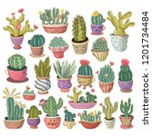 hand drawn colorful cactuses... | Shutterstock .eps vector #1201734484