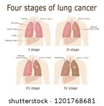 illustration of the four stages ... | Shutterstock .eps vector #1201768681