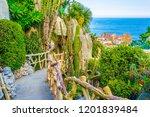 jardin exotique garden in... | Shutterstock . vector #1201839484