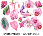 large set of pink flowers... | Shutterstock . vector #1201841011