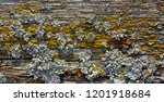 backgrounds and textures  old... | Shutterstock . vector #1201918684