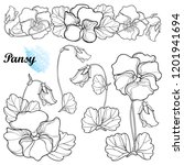 vector set with outline pansy... | Shutterstock .eps vector #1201941694