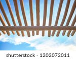low point of view on canopy... | Shutterstock . vector #1202072011