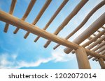 low point of view on canopy... | Shutterstock . vector #1202072014