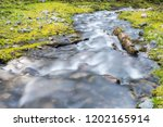 beautiful nature landscape of... | Shutterstock . vector #1202165914
