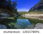 pelorus bridge scenic reserve   Shutterstock . vector #1202178091