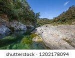 pelorus bridge scenic reserve   Shutterstock . vector #1202178094