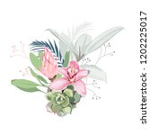 pink orchid  protea  herbs ... | Shutterstock .eps vector #1202225017