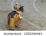picador riding his horse and... | Shutterstock . vector #1202246461