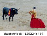 rear view of a bullfighter... | Shutterstock . vector #1202246464