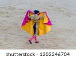 torero inblue and gold suit and ... | Shutterstock . vector #1202246704