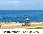 tel aviv  israel   october 13 ... | Shutterstock . vector #1202352847