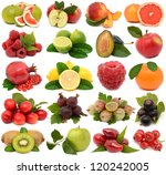 fruit on a white background | Shutterstock . vector #120242005