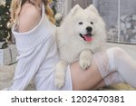Stock photo beautiful blonde in white clothes with a white husky on the background of the fireplace and 1202470381