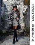 full length fashion portrait of ... | Shutterstock . vector #1202525317