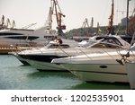 odessa  south of ukraine  the...   Shutterstock . vector #1202535901