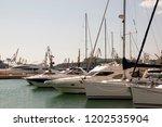 odessa  south of ukraine  the...   Shutterstock . vector #1202535904