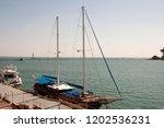 odessa  south of ukraine  the...   Shutterstock . vector #1202536231