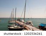 odessa  south of ukraine  the...   Shutterstock . vector #1202536261