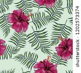 burgundy flowers hibiscus on... | Shutterstock .eps vector #1202573374