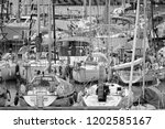italy  sicily  mediterranean...   Shutterstock . vector #1202585167