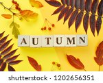 autumn background  flat lay... | Shutterstock . vector #1202656351