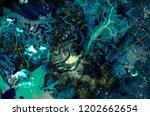 bahia blanca  buenos aires... | Shutterstock . vector #1202662654