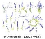 lavender illustration wreath... | Shutterstock .eps vector #1202679667