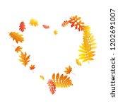 oak  maple  wild ash rowan... | Shutterstock .eps vector #1202691007