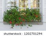 a long rectangular vase of red...