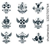 set of vector gym theme emblems ... | Shutterstock .eps vector #1202705764