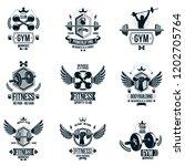 set of vector gym theme emblems ... | Shutterstock .eps vector #1202705764