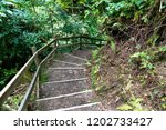 staircase leading down a... | Shutterstock . vector #1202733427