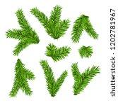 set of fir branches. christmas... | Shutterstock .eps vector #1202781967