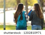 back view of two happy students ... | Shutterstock . vector #1202810971